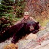 Black Bear -Picture Gallery