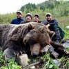 Interior Mountain Grizzly - Picture Gallery